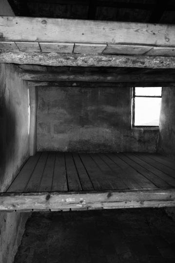auschwitz-bunks-1