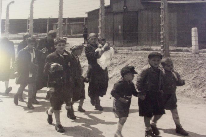 auschwitz-children-2-1