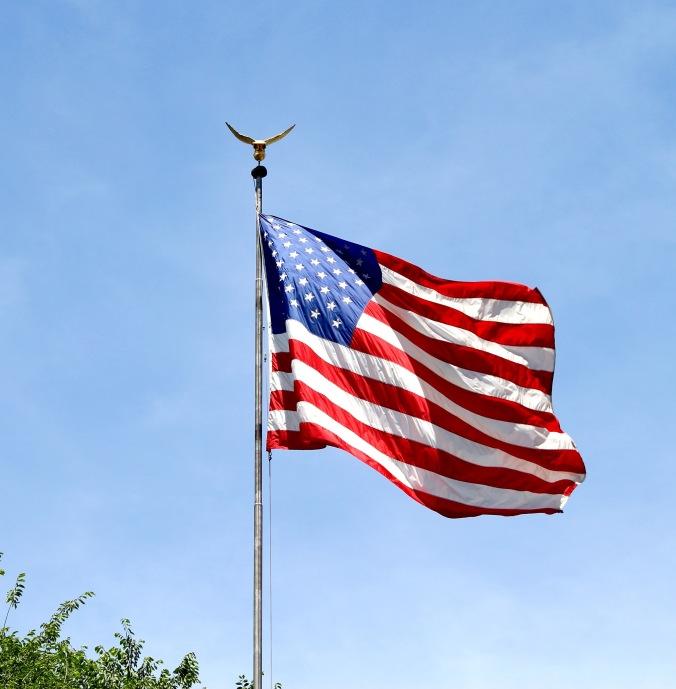 Flag - 1