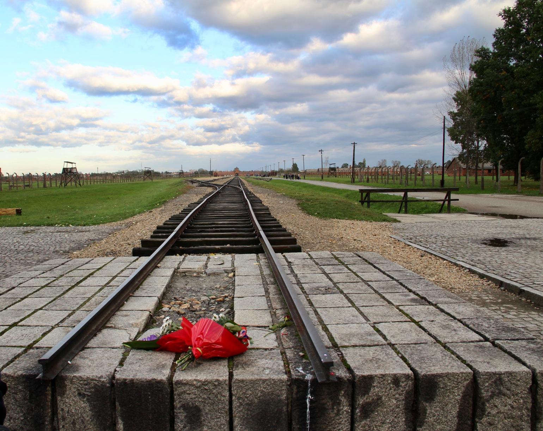 Auschwitz train track & flowers - 1